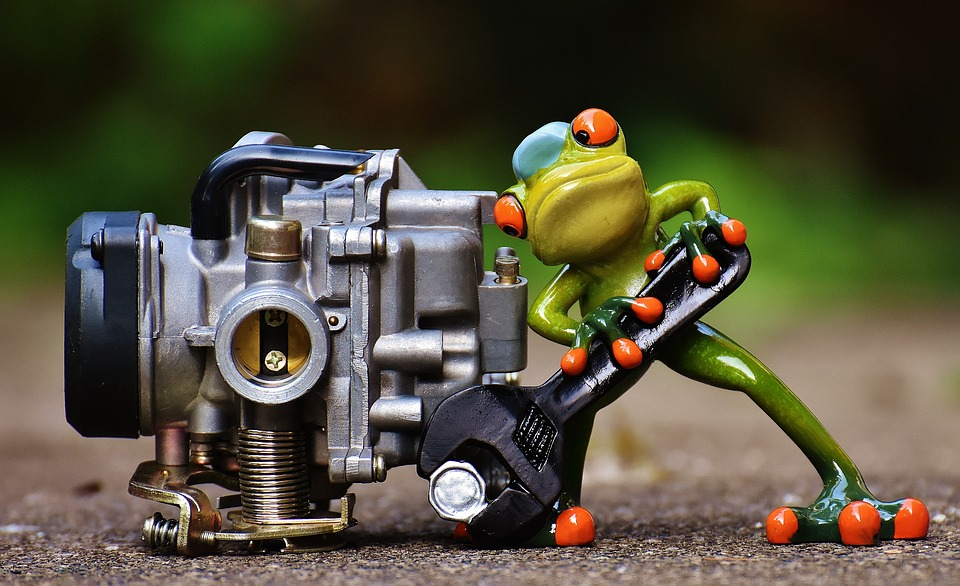 frog-1672974_960_720